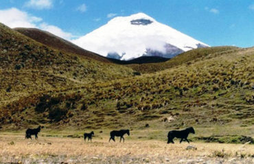 13-Epic-Treks-of-the-Andes-and-Amazon