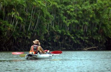 4-Day-2-Amazon-Wildlife-Kayak-Exploration