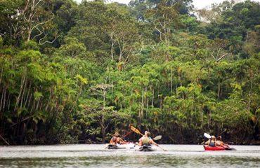 6-Day-3-Amazon-Wildlife-Kayak-Exploration