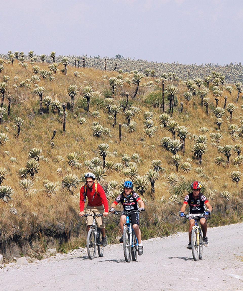 Land of the Imbayas Biking Adventure 5 Days