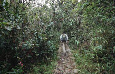 Iguaque Nature reserve 5